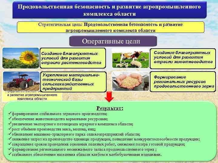 Продовольственная безопасность и развитие агропромышленного комплекса области Стратегическая цель: Продовольственная безопасность и развитие агропромышленного