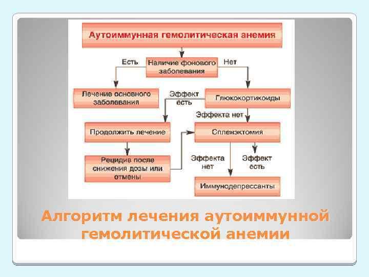 Алгоритм лечения аутоиммунной гемолитической анемии