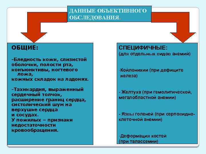 ДАННЫЕ ОБЪЕКТИВНОГО ОБСЛЕДОВАНИЯ. ОБЩИЕ: СПЕЦИФИЧНЫЕ: (для отдельных видов анемий) -Бледность кожи, слизистой оболочки, полости