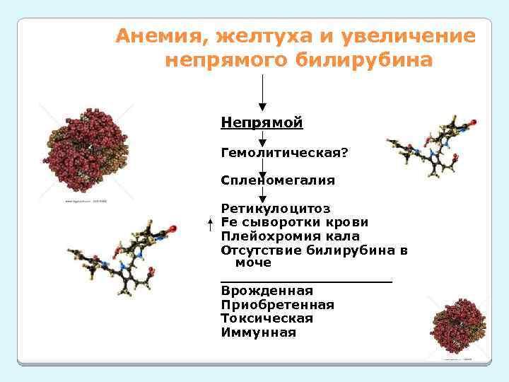 Анемия, желтуха и увеличение непрямого билирубина Непрямой Гемолитическая? Спленомегалия Ретикулоцитоз Fe сыворотки крови Плейохромия
