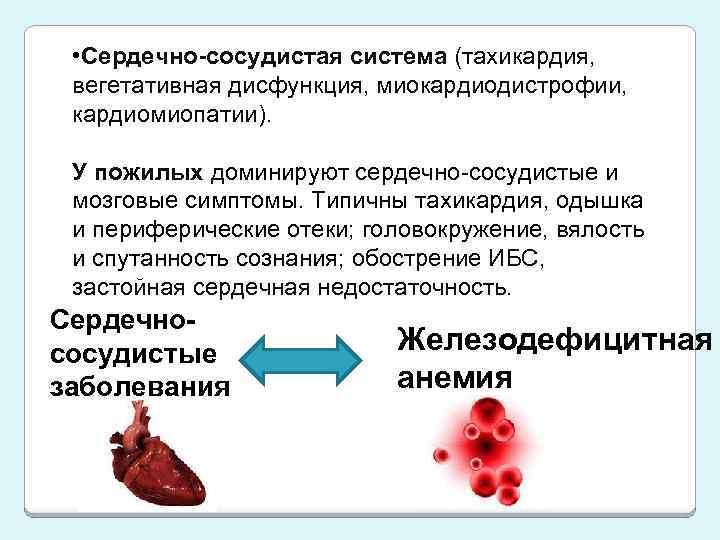 • Сердечно-сосудистая система (тахикардия, вегетативная дисфункция, миокардиодистрофии, кардиомиопатии). У пожилых доминируют сердечно-сосудистые и