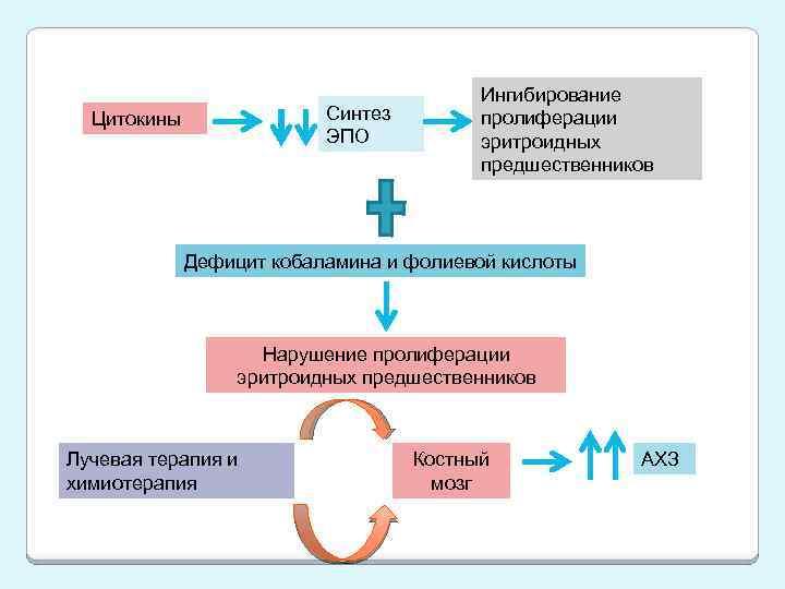 Синтез ЭПО Цитокины Ингибирование пролиферации эритроидных предшественников Дефицит кобаламина и фолиевой кислоты Нарушение пролиферации