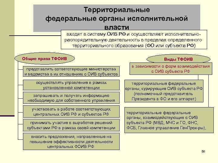 Территориальные федеральные органы исполнительной власти входят в систему ОИВ РФ и осуществляют исполнительнораспорядительную деятельность