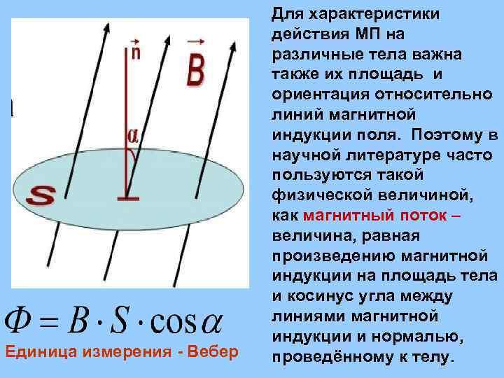 Единица измерения - Вебер Для характеристики действия МП на различные тела важна также их
