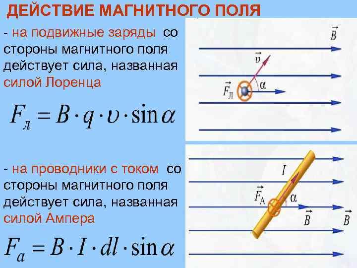 ДЕЙСТВИЕ МАГНИТНОГО ПОЛЯ - на подвижные заряды со стороны магнитного поля действует сила, названная