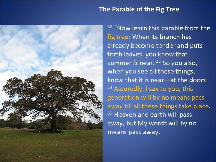 """The Parable of the Fig Tree 32 """"Now learn this parable from the fig"""