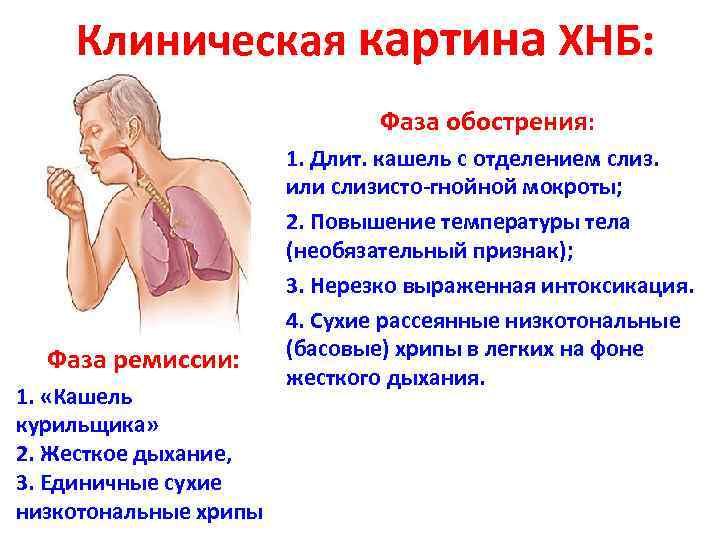 Клиническая картина ХНБ: Фаза обострения: Фаза ремиссии: 1. «Кашель курильщика» 2. Жесткое дыхание, 3.
