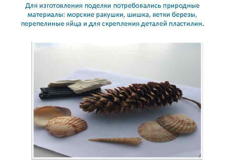 Для изготовления поделки потребовались природные материалы: морские ракушки, шишка, ветки березы, перепелиные яйца и