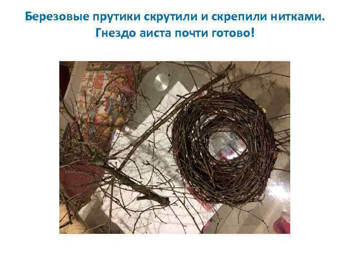 Березовые прутики скрутили и скрепили нитками. Гнездо аиста почти готово!