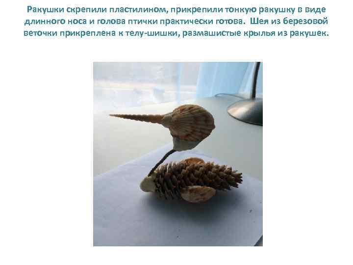 Ракушки скрепили пластилином, прикрепили тонкую ракушку в виде длинного носа и голова птички практически