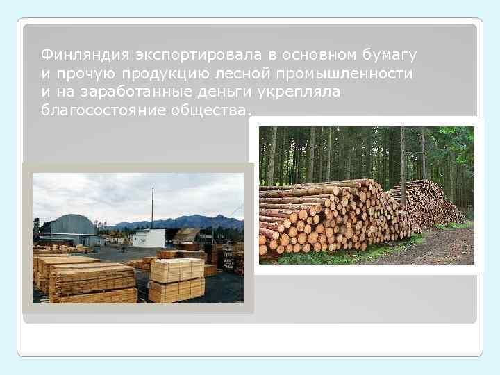 Финляндия экспортировала в основном бумагу и прочую продукцию лесной промышленности и на заработанные деньги