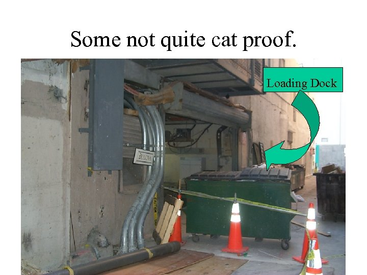 Some not quite cat proof. Loading Dock