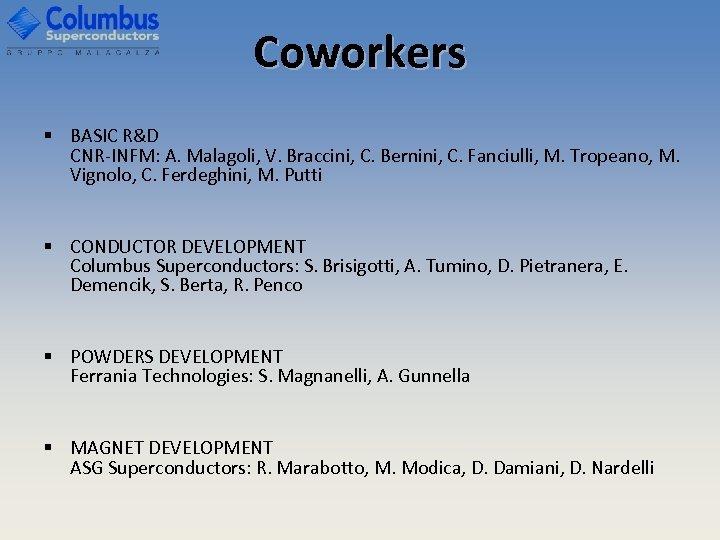 Coworkers § BASIC R&D CNR-INFM: A. Malagoli, V. Braccini, C. Bernini, C. Fanciulli, M.