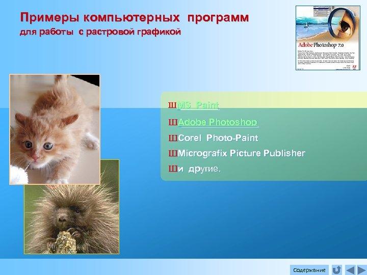 Примеры компьютерных программ для работы с растровой графикой Ш MS Paint Ш Adobe Photoshop