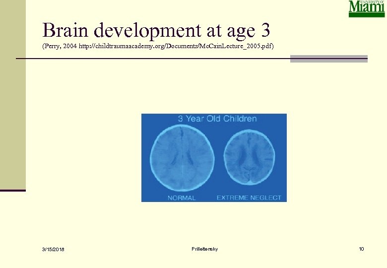 Brain development at age 3 (Perry, 2004 http: //childtraumaacademy. org/Documents/Mc. Cain. Lecture_2005. pdf) 3/15/2018