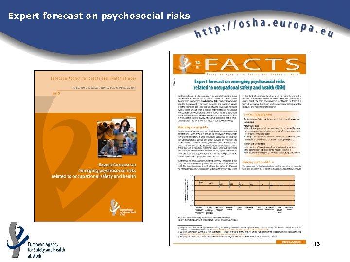 Expert forecast on psychosocial risks 13