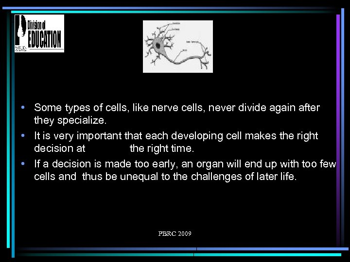 • Some types of cells, like nerve cells, never divide again after they
