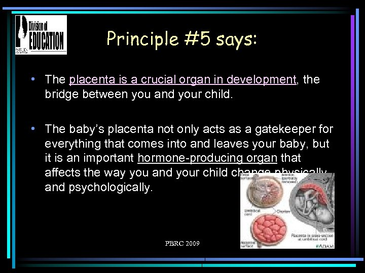 Principle #5 says: • The placenta is a crucial organ in development, the bridge