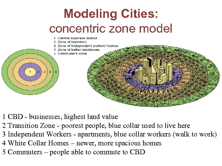 Modeling Cities: concentric zone model 1 CBD - businesses, highest land value 2 Transition
