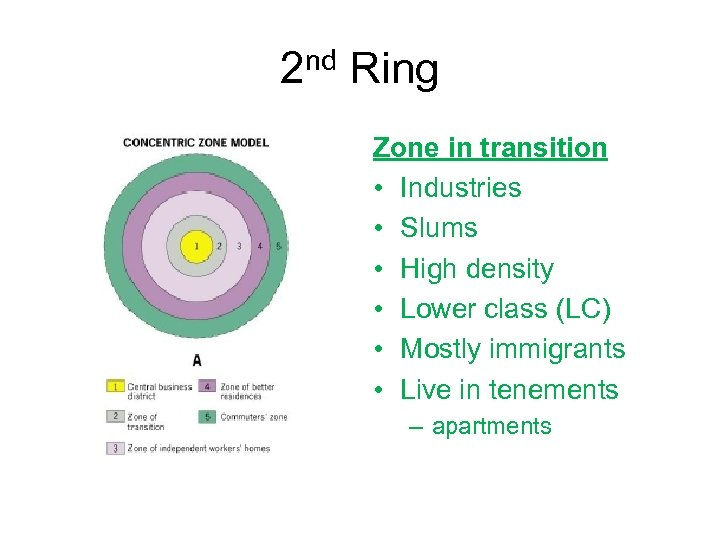 2 nd Ring Zone in transition • Industries • Slums • High density •