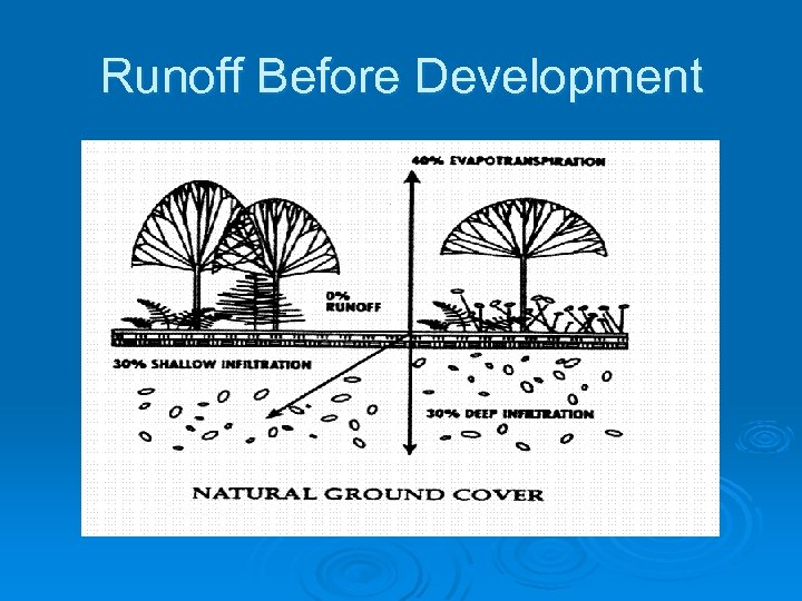 Runoff Before Development