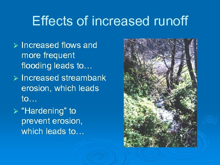 Effects of increased runoff Increased flows and more frequent flooding leads to… Ø Increased
