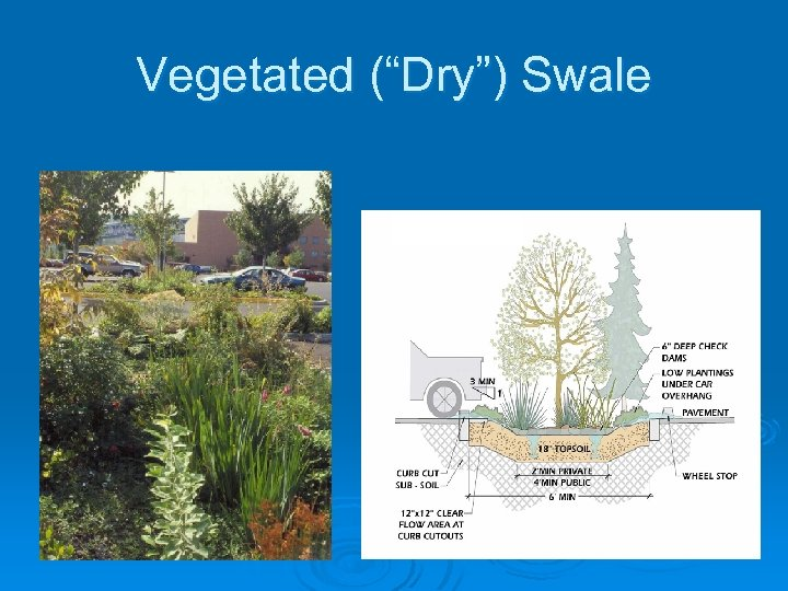 "Vegetated (""Dry"") Swale"