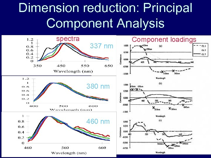 Dimension reduction: Principal Component Analysis spectra 337 nm 380 nm 460 nm Component loadings
