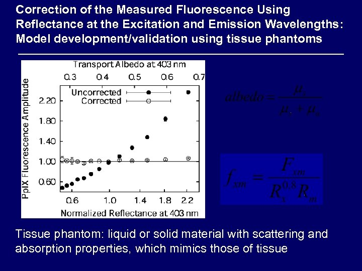 Correction of the Measured Fluorescence Using Reflectance at the Excitation and Emission Wavelengths: Model