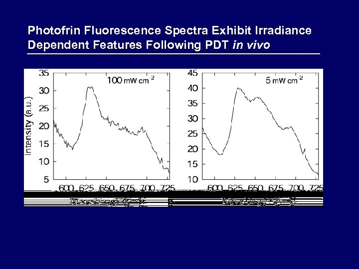 Photofrin Fluorescence Spectra Exhibit Irradiance Dependent Features Following PDT in vivo