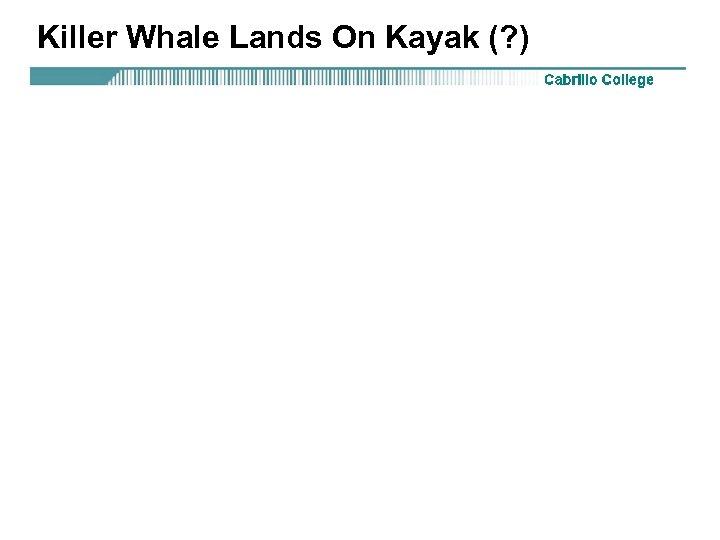 Killer Whale Lands On Kayak (? )