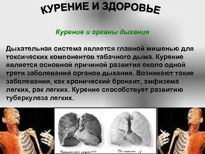 Курение и органы дыхания Дыхательная система является главной мишенью для токсических компонентов табачного дыма.