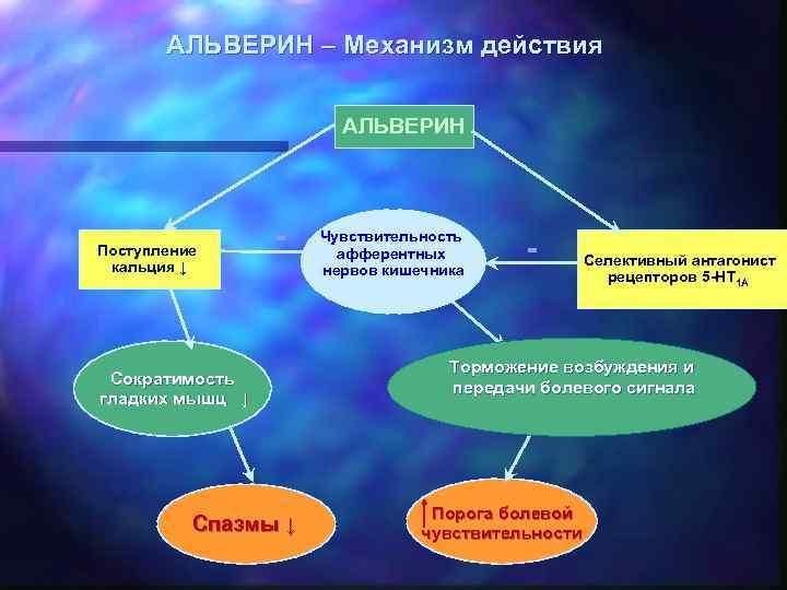 АЛЬВЕРИН – Механизм действия АЛЬВЕРИН Поступление кальция ↓ - Сократимость гладких мышц ↓ Спазмы