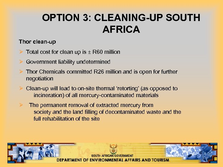OPTION 3: CLEANING-UP SOUTH AFRICA Thor clean-up Ø Total cost for clean up is