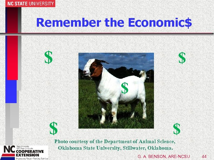 Remember the Economic$ $ $ $ Photo courtesy of the Department of Animal Science,