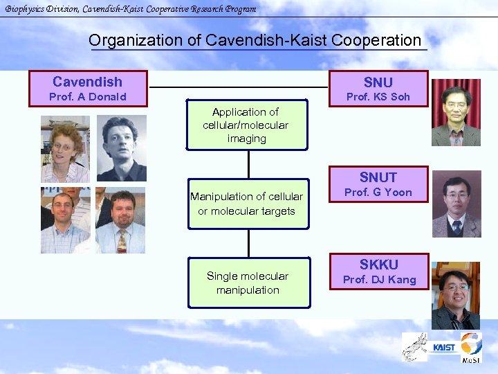 Biophysics Division, Cavendish-Kaist Cooperative Research Program Organization of Cavendish-Kaist Cooperation Cavendish SNU Prof. A