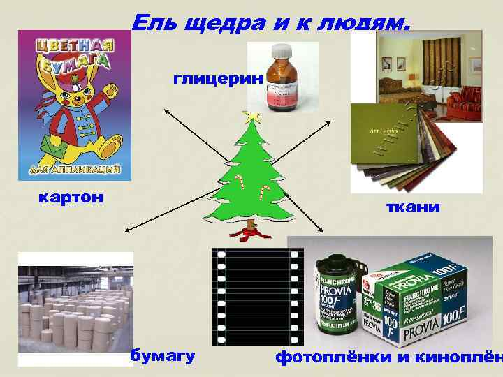 Ель щедра и к людям. глицерин картон ткани бумагу фотоплёнки и киноплён