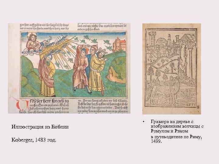 Иллюстрация из Библии Koberger, 1483 год. • Гравюра на дереве с изображением волчицы с