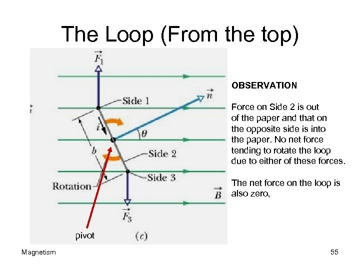 The Loop (From the top) OBSERVATION Force on Side 2 is out of the
