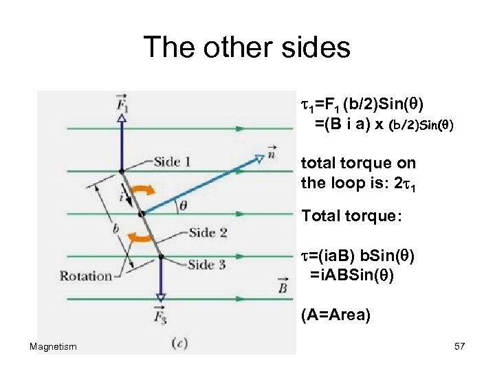 The other sides t 1=F 1 (b/2)Sin(q) =(B i a) x (b/2)Sin(q) total torque