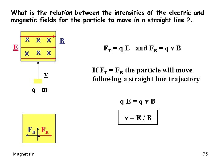 What is the relation between the intensities of the electric and magnetic fields for