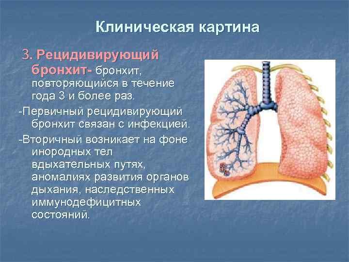 Клиническая картина 3. Рецидивирующий бронхит- бронхит, повторяющийся в течение года 3 и более раз.