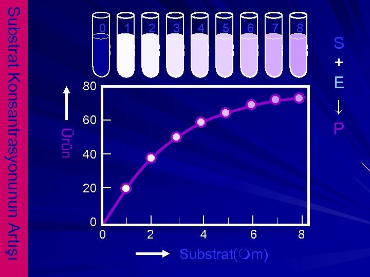 1 2 3 4 5 6 7 8 80 60 Ürün Substrat Konsantrasyonunun Artışı