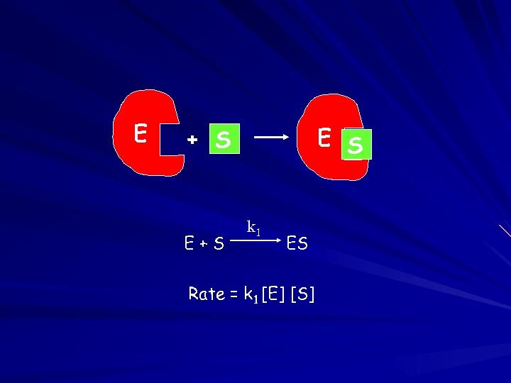 E E S + S E+S k 1 ES Rate = k 1 [E]