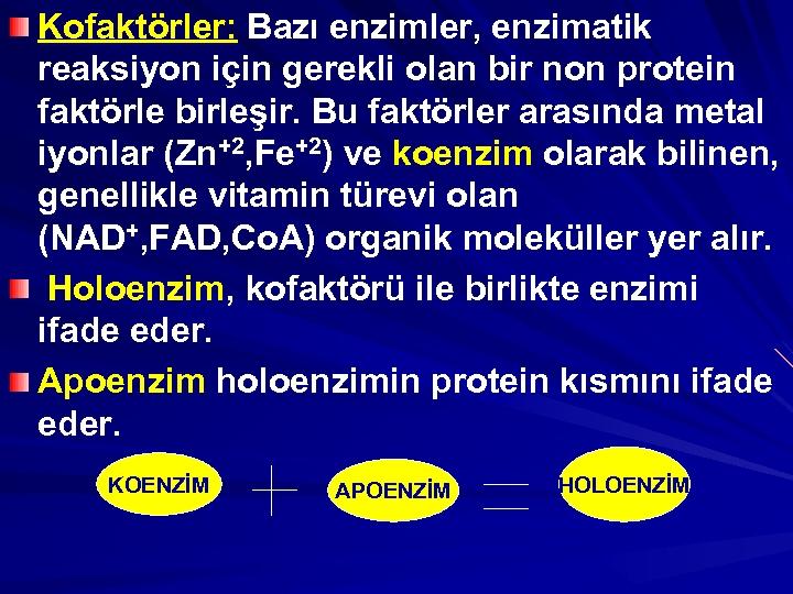 Kofaktörler: Bazı enzimler, enzimatik reaksiyon için gerekli olan bir non protein faktörle birleşir. Bu
