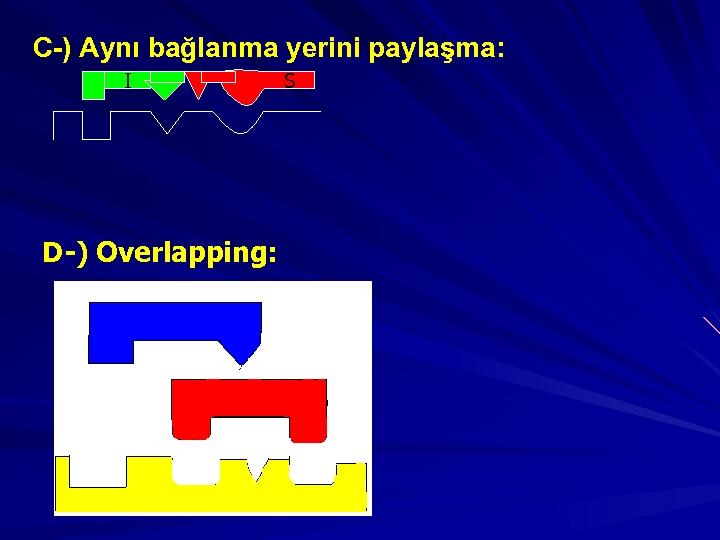C-) Aynı bağlanma yerini paylaşma: I D-) Overlapping: S