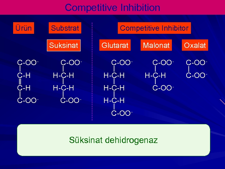 Competitive Inhibition Ürün Substrat Suksinat C-OO- Competitive Inhibitor Glutarat C-OO- C-H H-C-H C-OO- Malonat