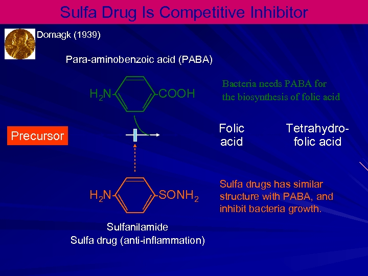 Sulfa Drug Is Competitive Inhibitor Domagk (1939) Para-aminobenzoic acid (PABA) H 2 N- -COOH