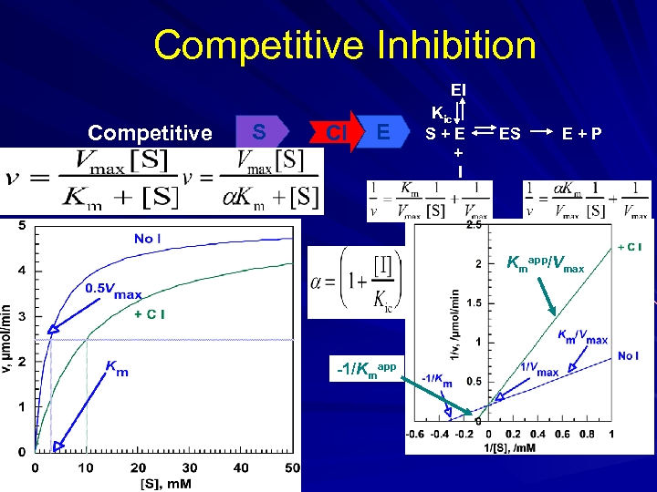 Competitive Inhibition EI Competitive S CI E Kic S+E + I ES E+P Kmapp/Vmax
