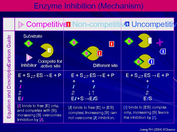 Enzyme Inhibition (Mechanism) Equation and Description Cartoon Guide Competitive Non-competitive Uncompetitive Substrate Compete for